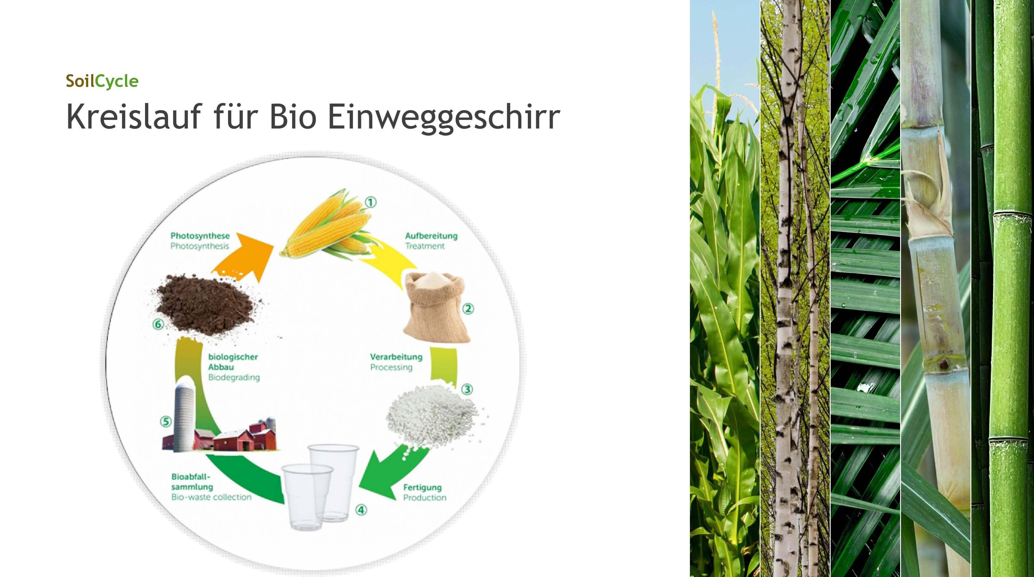 Bio Einweggeschirr SoilCycle